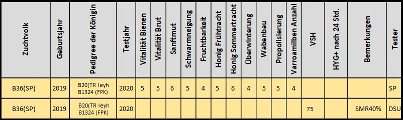 Bewertung der B36(SP) von Peter Spiecker und Dietmar Uhlemann